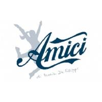 AMICI 12